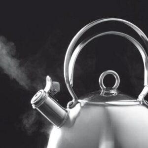 Лучшие чайники для газовой плиты 2021: обзор лучших качественных моделей и  советы по выбору